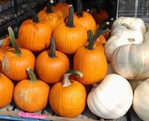 monksmarketpumpkins